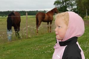 Ella har många funderingar efter en dag med hästar på Vedby.