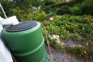 Tunnan på framsidan av huset räcker gott och väl till blommorna där, den brukar fyllas upp fort men i år är nivåerna lägre än vanligt.
