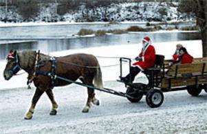 Berta fortsätter att sprida stämning inför julen. I år går turen genom Stadsparken och Boulognerskogen. FOTO: LEIF JÄDERBERG