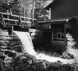 Kulturmiljön i Trolldalen bär en stolt hälsingsk tradition av linberedning. Bilden är från 1970-talet.