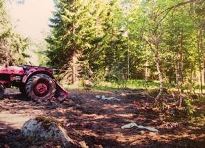 I hagen fanns massor med skrot bland annat en gammal traktor.