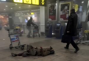 En skadad man ligger på golvet på Bryssels internationella flygplats, Zaventem efter tisdagens terroristattack mot flygplatsen.