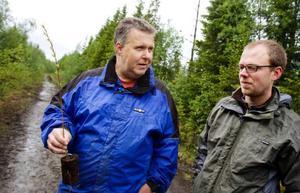 Håkan Schüberg från Jilu och Jonas Vestun från Jämtkraft är delaktiga i projektet att ta fram en lämplig hybridasp som passar bra för ett norrländskt klimat. I långa loppet kan det vara ett bra alternativ för markägare som vill satsa på biogasbränsle.