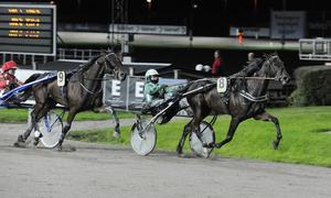 Nelli Eighteen May och kusken Jenni Åsberg skrällde rejält under lördagens V65 på Gävletravet.