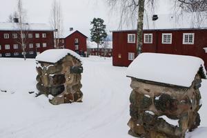 Sjuksköterskor och läkare som flytt till Sverige skulle kunna utbildas på Brunnsvik så de snabbare får svensk legitimation, föreslår Ken Swedenborg.