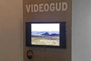 Så här ser de ut – Videogudstationerna.