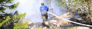 Ett skogsområde på Mössön stod i brand under fredagens förmiddag.