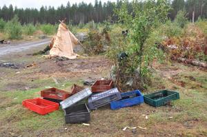 TÄLTREST. Kvarlämnade plastbackar och ett tält av papper. Bärplockarna lämnade skogen full av skräp då de drog vidare.