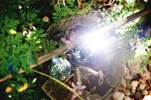 Detaljer. Speglar i olika former finns utspridda i växtligheten och skapar ljusspel över bladen.
