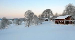 Höga värden. Länsstyrelsen ser det som en fördel att naturreservatet Björskogsnäs även i fortsättningen ägs av kommunen. Området har stora biologiska och kulturella värden som ses av över 10 000 besökare årligen.