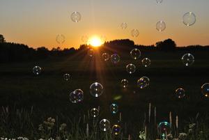 Bubblorna krigar om vem som kommer närmast solnedgången..