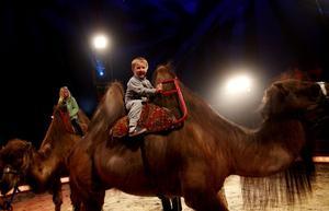 Wilmer Carlsson, 5 år, från Sörberge var helt exalterad under sitt första cirkusbesök någonsin. I pausen fick han rida på en kamel.