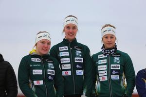 Anna Hedström, Viktoria Karlsson och Johanna Nordqvist tävlandes för I 21 IF segrade i damernas stafett, och tog därmed JSM-guld i stafetten.
