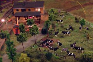 Inredda byggnader med folk och en levande lantgård. Det är inte bara järnväg och tåg på Haralds modelljärnväg, där allt är byggt i skala 1:87, det vill säga H0.