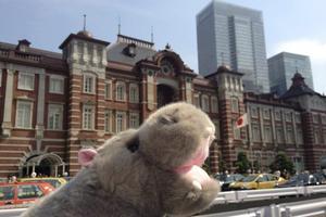 En flodhäst på Tokyo Station.