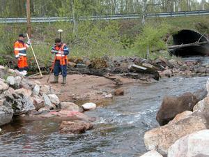 Återställande av Sågdammen i Östanvik. Arbetare gör utsättningar och inmätningar på Sågdammen.
