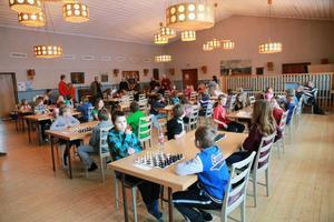 Ett femtiotal fjärdeklassare hade samlats på Församlingshemmet när Schackfyran drog igång i Hede.
