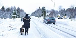– Sträckan har blivit mer och mer farlig för gångtrafikanter eftersom trafiken ökar hela tiden, säger Barbro Källmark.