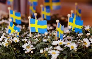 Nationaldagen uppmärksammas på flera orter i Härjedalen nu på tisdag.