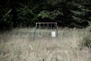 En övergiven gungställning står ensam på den övervuxna grönytan.