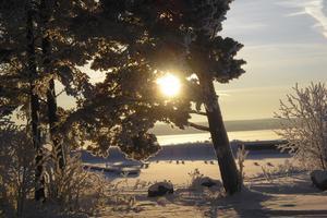 Martins brygga i Täng ocksåpå samma kalla dag. Foto: Åke Andersson