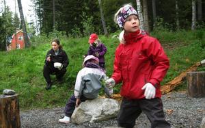 Tove Wåström är en av sakletarna när Skogisarna inom Naturstudieklubben träffas för en avslutning.