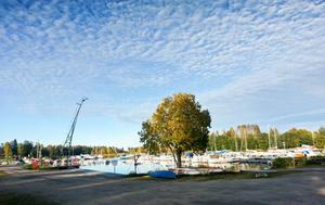 Kanske är det den rofyllda och vackra omgivningen kring Sandarne båtklubb som gör att husbilsgästerna trivs på klubben.