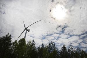Anton Steen, Svensk Vindenergi, slår tillbaka mot Ulla Magnusson och Naturskyddsföreningens anklagelser om att vindkraften byggs ut utan hänsyn till naturvärden.