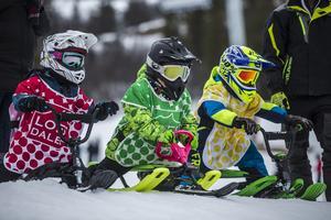 De yngsta tävlanden var mellan fem till sju år. Justin Friden, Milan Fritz och Edvin Lindberg redo för start.