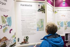 Utställningen finns att ta del av till 31 december i Forsbacka.