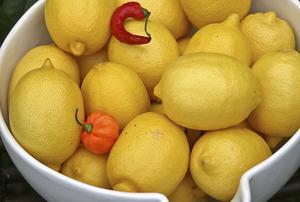 Citroner får maten att smaka friskt och gott. Själva frukten är rik på nyttig C-vitamin.