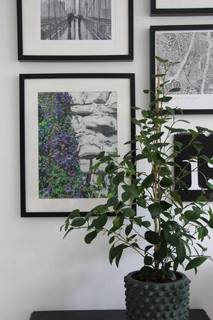 På tavelväggen samsas kartor, foton och Josefines grafiska blad. Tavlan med de lila blommorna som klättrar på en stenmur har Josefine gjort.