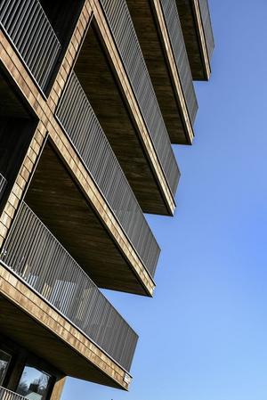 Nybyggt trähus. Norra Djurgårdsstaden i Stockholm. Arkivfoto: Anders Wiklund / TT