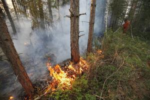 En särskild analysgrupp fanns på plats i Ramnäs för att försöka förutspå eldens framfart.
