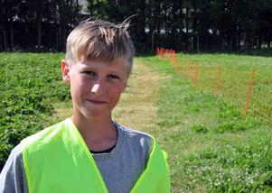 Erik Nordevind, 15 år från Rödön, sommarjobbar på Rödöns jordgubbsland.