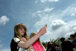 FRIHET. Maria Mateji´c lyfter fjärilen mot skyn. I onsdags släppte sjätteklassarna på Sörgärdets skola ut 23 Tistelfjärilar.