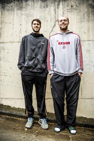 196 cm långe Tyler Peters är komboguarden som ska ersätta Adama Darboe. 206 cm långe centern Trevor Gruis ska fylla skorna efter succécentern Brandon Peterson.