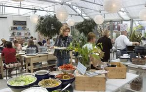 Lilla k:s trädgårdskök höjde priset med sex kronor den 1 juli. Priset för en lunch är nu 85 kronor och det är högst i Bollnäs tillsammans med Scandic Hotel.