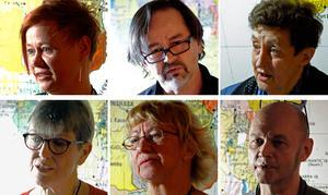 Theres K Agdler, Magnus Ottelid, Berta Magnusson, Gunilla Johansson, Ann-Sofie Sundholm och Peter Lucas Erixon.