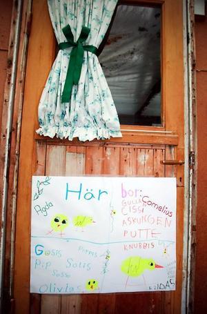 Frida och Olivia har gjort en skylt som sitter på dörren till hönshuset.Olivia och Frida i kycklingarnas avdelning i hönsgården.