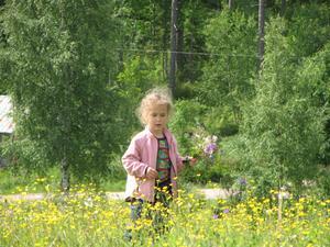 Hilda plockar midsommarblommor. foto Mats-Dage Eriksson