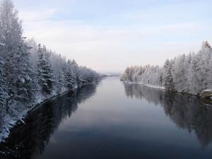 En av Faxälvens armar nedan Russfjärden, fotograferat mot Russfjärden från en bro på vägen mellan Ulriksfors och Hallviken. Foto: Henrik O A Barkman