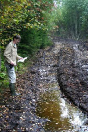 Göran Berg är skogsvårdskonsulent på skogsvårdsstyrelsen i Sundsvall. Han konstaterade att det kommer krävas stora insatser för att laga elljusspåret i Njurunda efter att skogsmaskinerna kört på spåret vid avverkning. Men så länge de lagar det som blivit förstört tycker han inte att det finns något att klaga på.