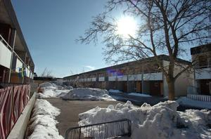 Granbergshöjden i vårvintersol.