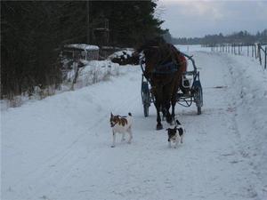 Niclas kör Daniel och Torsten o Bosse visar vägen