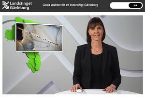 Region Gävleborgs tv-satsning utreds.