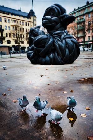 Second rubber duck. Arkivbild: Jonas Classon.