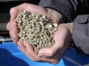 Det finns pengar att tjäna på att jämföra olika pelletsleverantörers villkor.