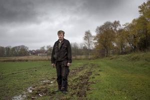 Henrik Arnesson har fått sina åkrar uppbökade av vildsvinen.