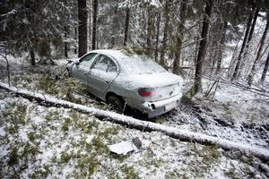 Ett dött träd stoppade något bilens luftfärd. Bilisten klarade sig till synes nästan oskadd.